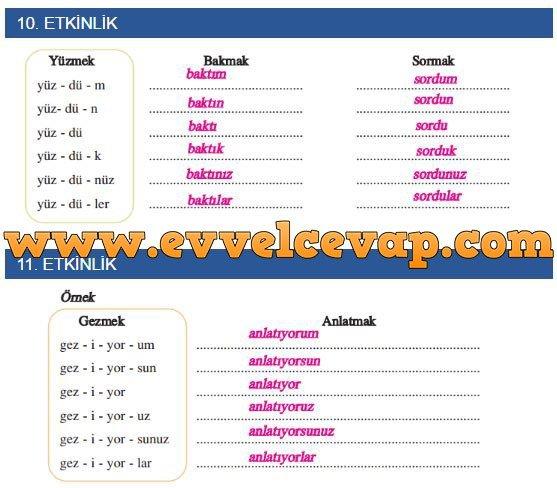 gunese-dogru-etkinlik-10-ve-11-etkinlik-cevaplari